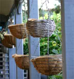 baskets assorted waiting planting