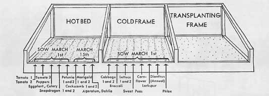 drawing of a cold frame and hotbed garden