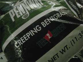 bag of creeping bentgrass seed