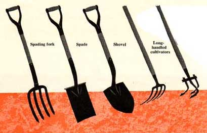 http://images.plant-care.com/cultivating-hand-tools-1.jpg