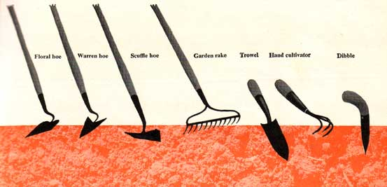 http://images.plant-care.com/cultivating-hand-tools-2.jpg