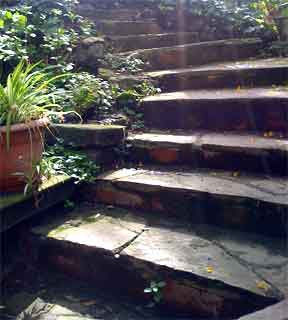 rugged natural garden steps