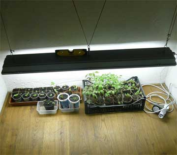 homemade grow light
