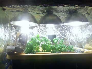 A DIY grow light system