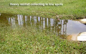 excess water from rain collecting in low spots