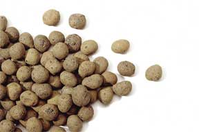 LECA rock growing pellets