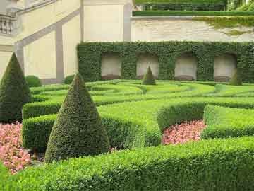 very manicured hedge in a large garden
