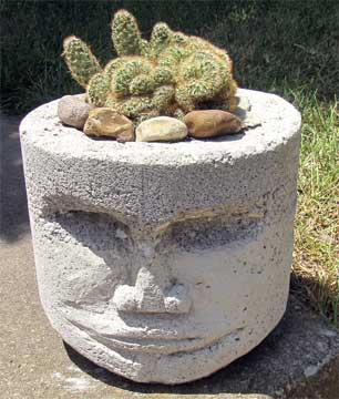 potted head with brain cactus